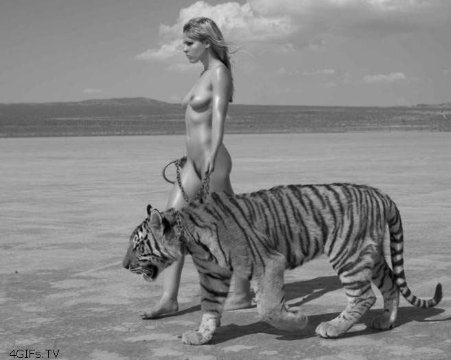 naked woman walking a tiger with a leash in the desert